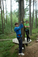 Scouts in trees