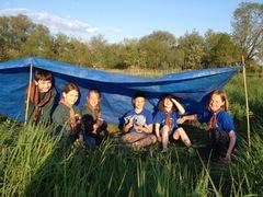 Cubs shelter building Summer '16